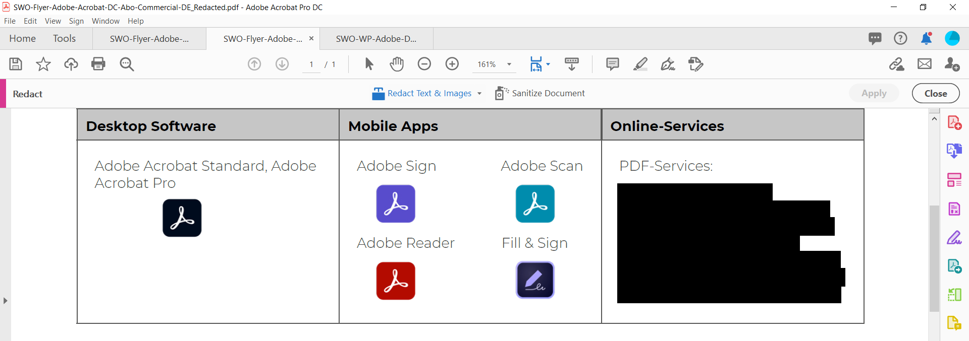 Document with redacted text in Adobe Acrobat Pro