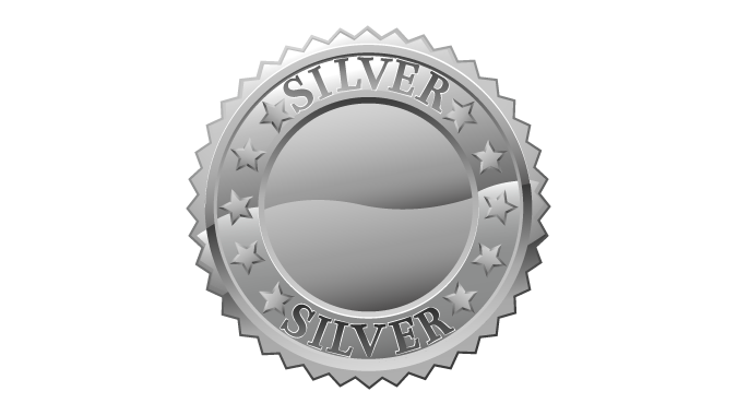 Silver medal icon