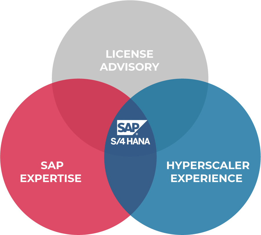 SAP Technology Services Capabilities